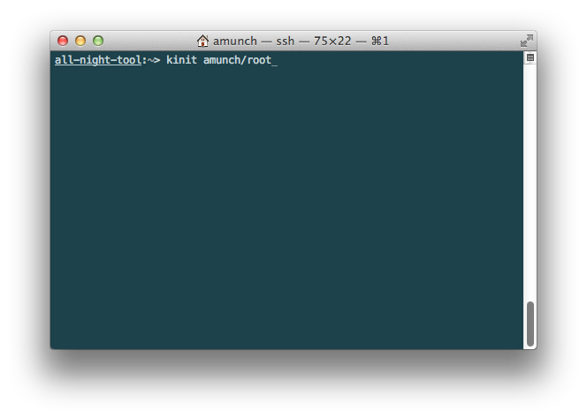Terminal with command 'kinit amunch/root' entered.