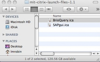Citrix launch files