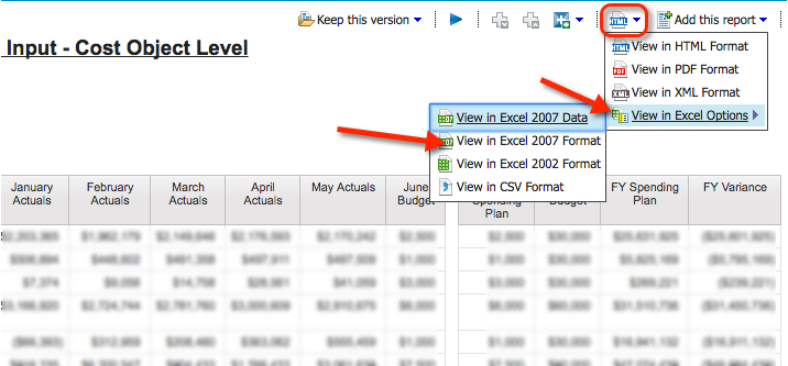 View in Excel 2007 format option
