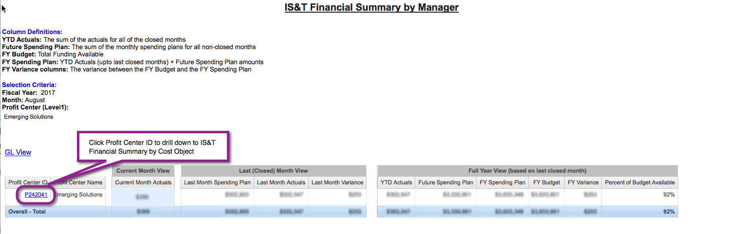 IS&T Financial Summary by Manager sample