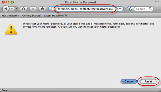 Reset Master Password page